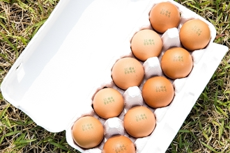 '동물복지 달걀'(?)... 소비자 인지도‧구매 경험 늘어