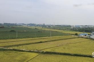 '쌀 수입관세율'513확정
