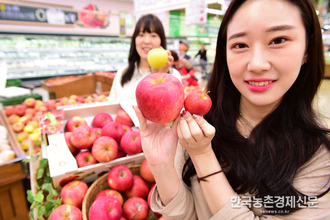 사과나무'부란병' 농가들 주의...12월부터4월 사이 집중 발생