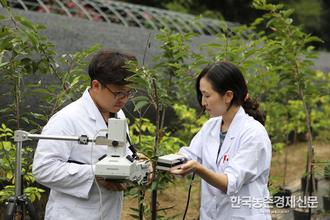 '나무의사' 자격시험 연기