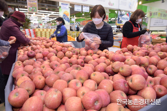 친환경 농산물 소비 활성화