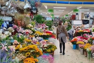 중국산 '화훼류 대국' 덤핑판매 극성