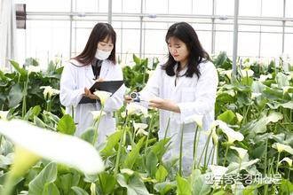 '신선농산물'온라인 시장확대 추세