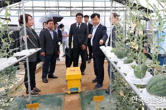 '스마트팜' 농업생산 효율성 급신장 기대