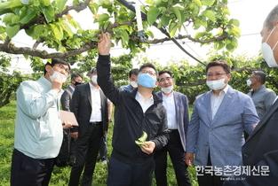 '온라인농산물거래소' 농산물 도매유통 '뉴딜' 혁신 기대