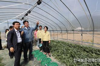 '고정식 수박 온실' 농작업 편의성 높여