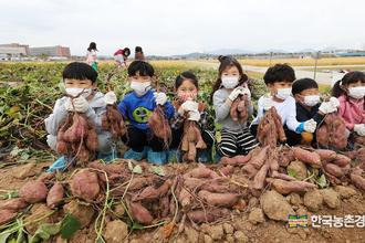 '돼지 생축 홍콩수출'차질없도록 정부 적극 협조해야