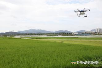 '쌀생산'1조 8천억원 손실 추정