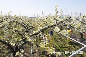 농촌진흥청 '국민정책디자인단' 활동 나섰다!
