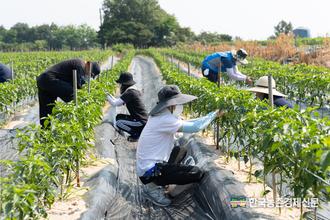 여성 농업인 '근골격계' 질환 높다