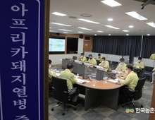 [속보] 인제군 돼지농장 'ASF 발생'