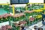 '화훼공판장' 온라인매매시스템 효과 커