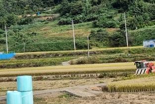 생산자 의견 배제한 '정부 쌀 수급안정대책' 규탄!
